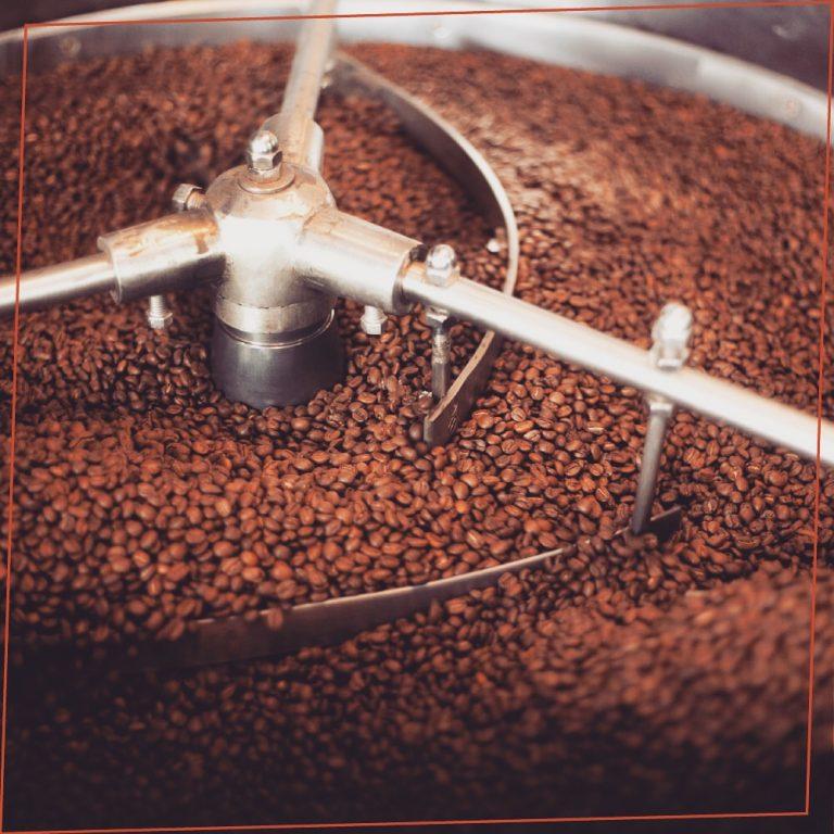 Taze kahve